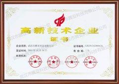 武汉市腾亚科技有限公司荣誉资质